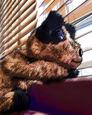 Puppy waits