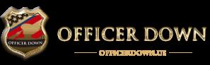 top-logo-sm-od